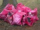 Müllsammelaktion 2010
